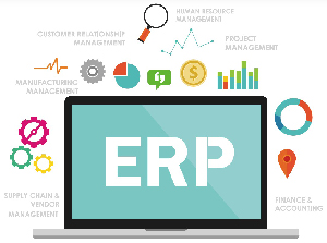 Skills development in ERP systems through work placements